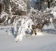http://mgafk.ru/content/pages/307/images/p1c5lfsq1i16q918001mkm18ot1codg.jpg