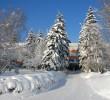 http://mgafk.ru/content/pages/307/images/p1c5lfsq1k3pvlcn1bdk9vk1fdn15.jpg